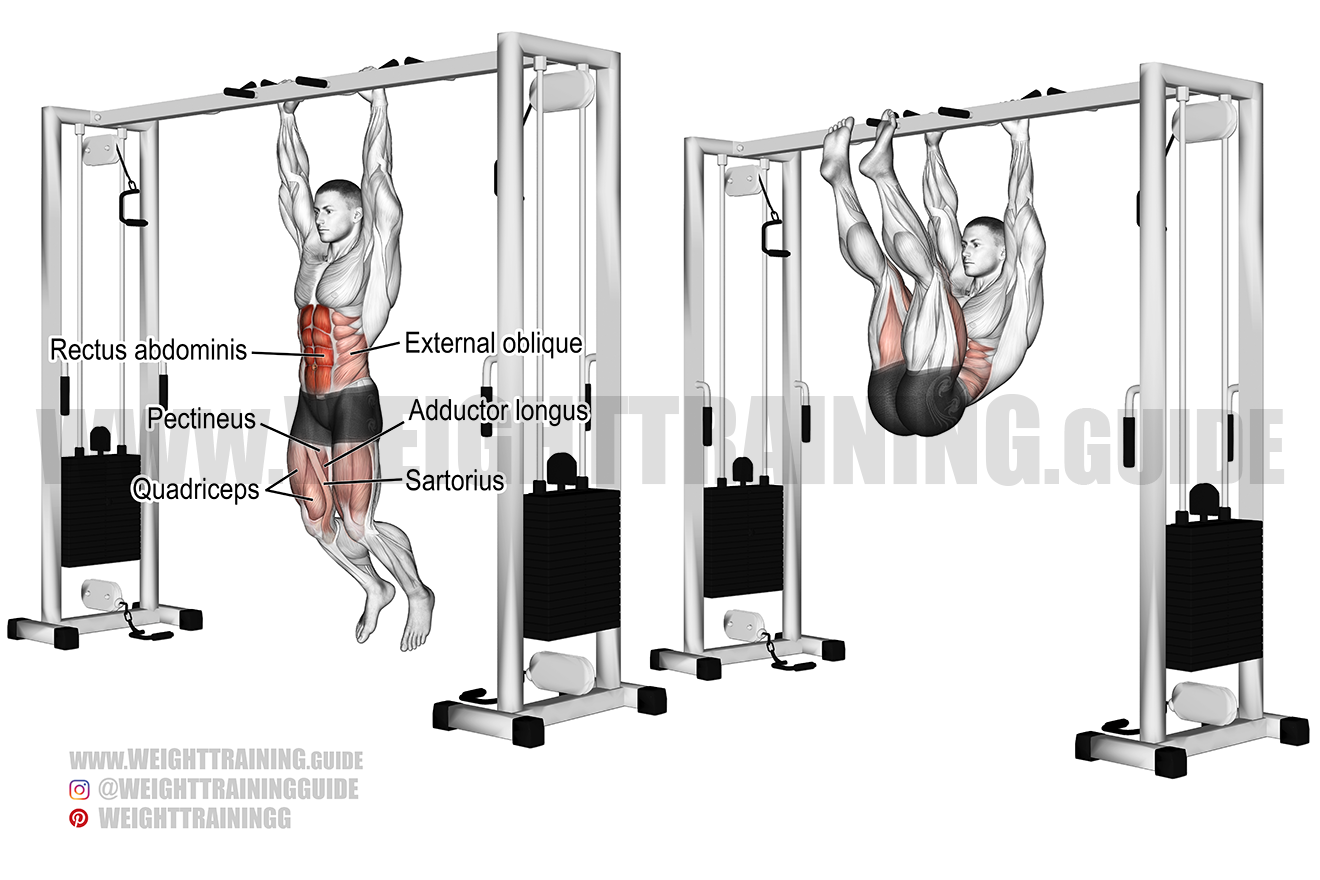 Hanging straight leg and hip raise exercise