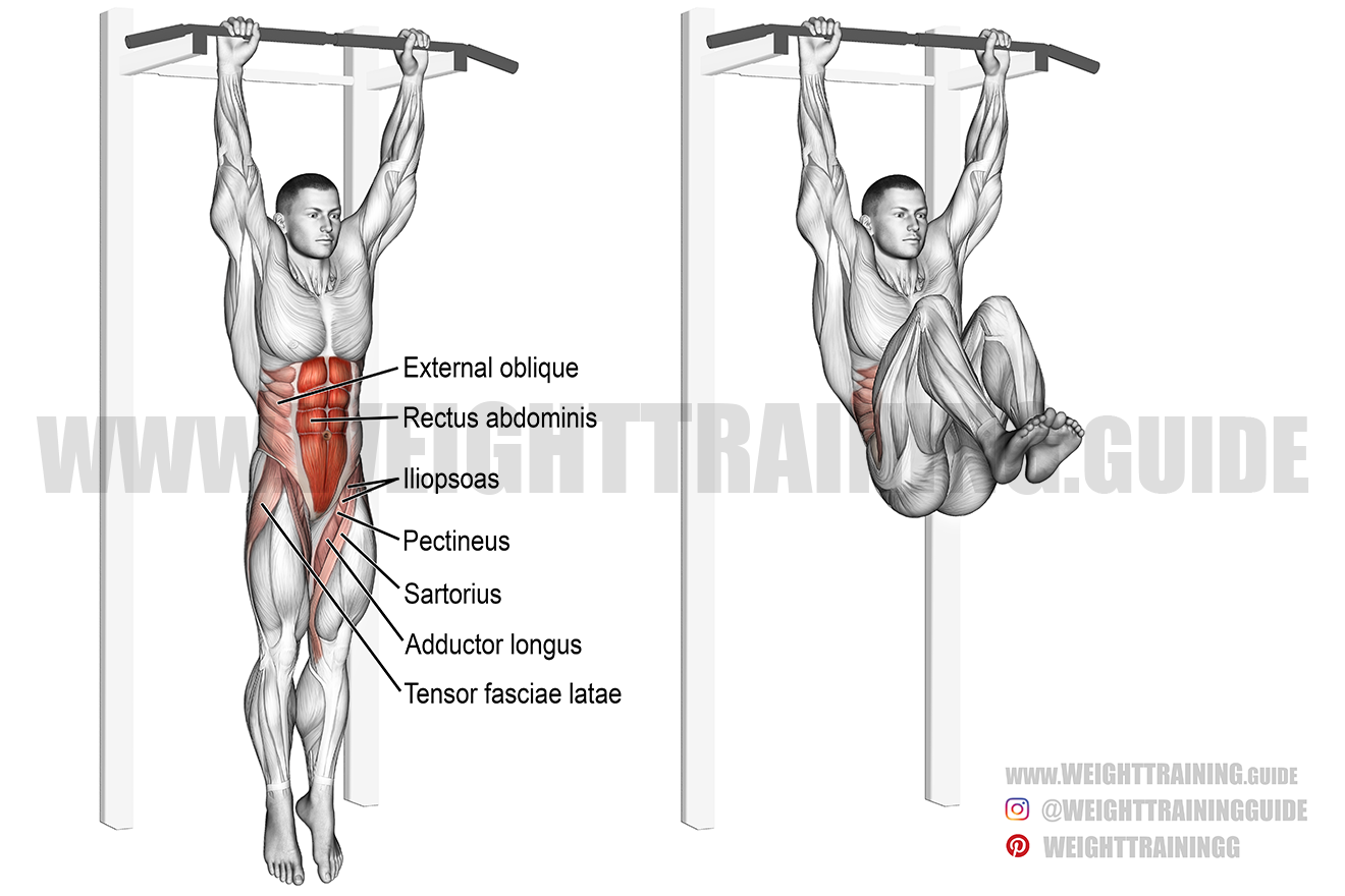 Hanging leg and hip raise exercise