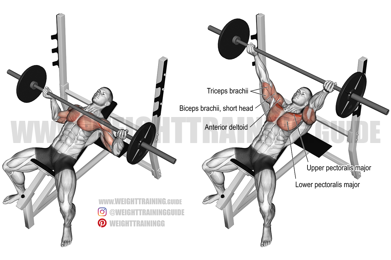Incline Reverse-Grip Barbell Bench Press exercise