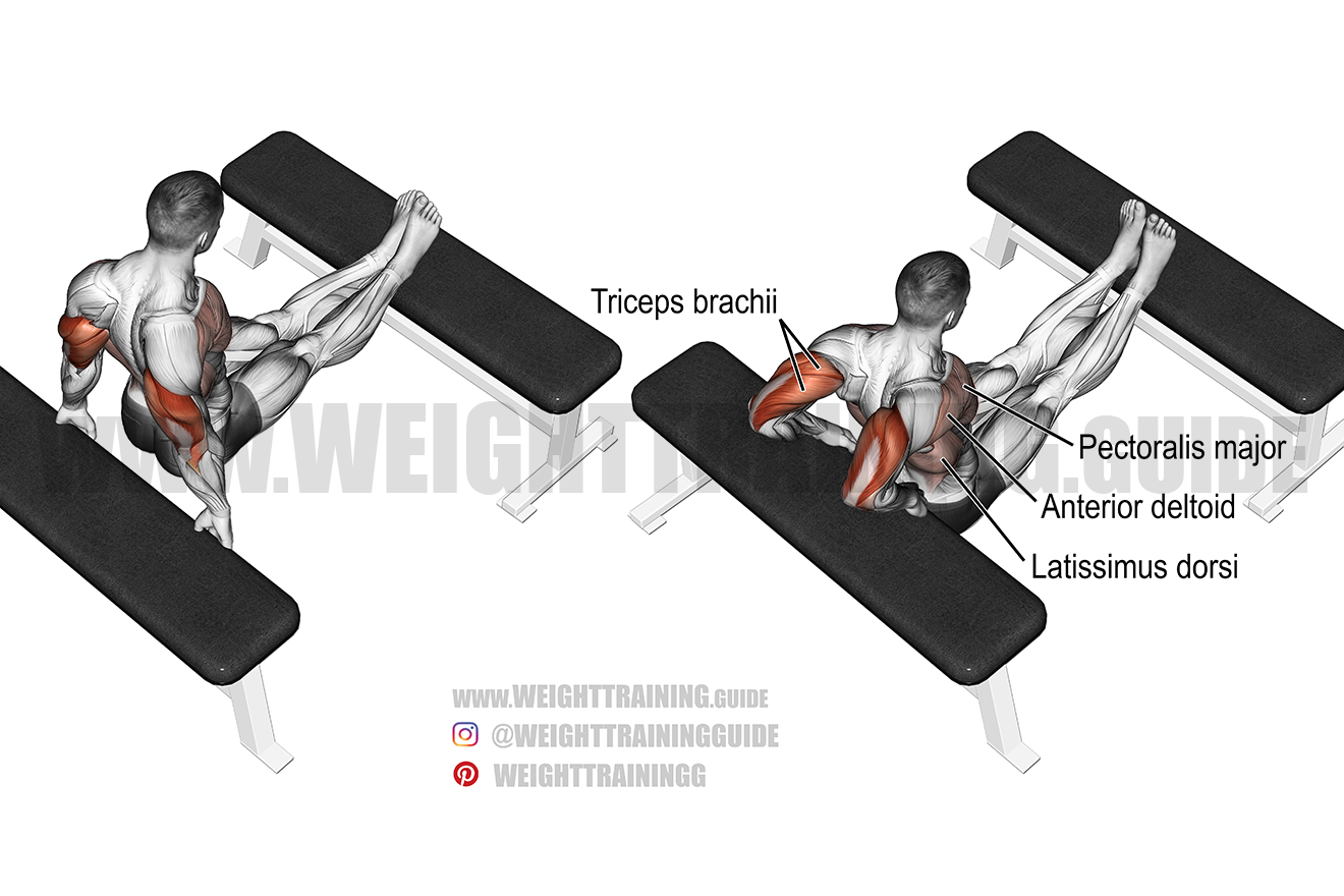 Bench dip triceps exercise
