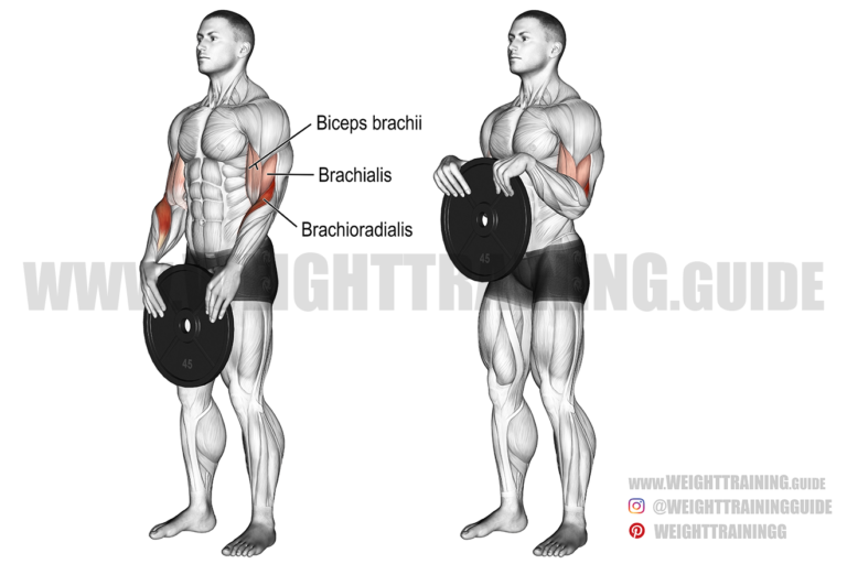 Weight plate reverse curl