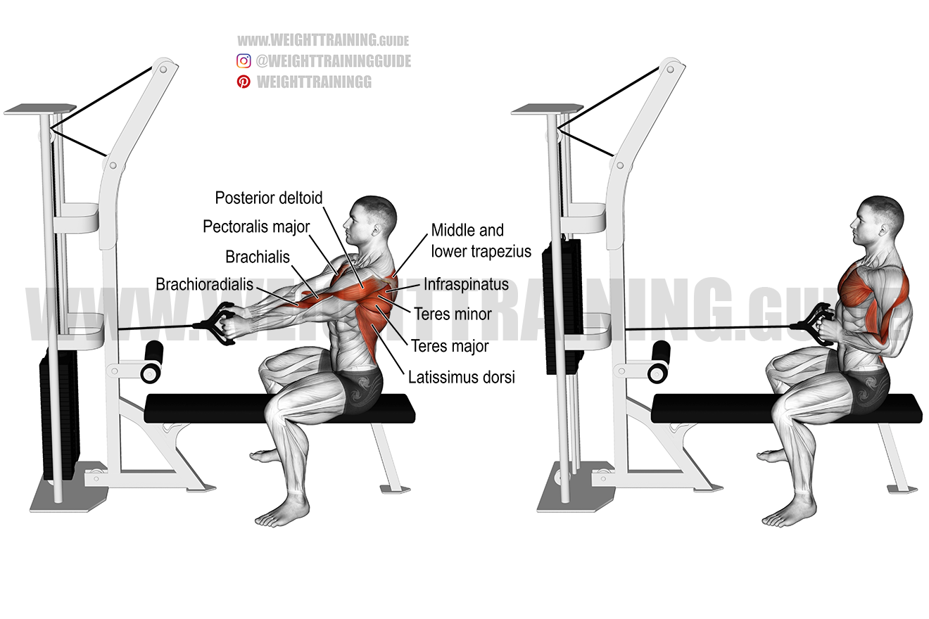Straight-back seated cable row exercise