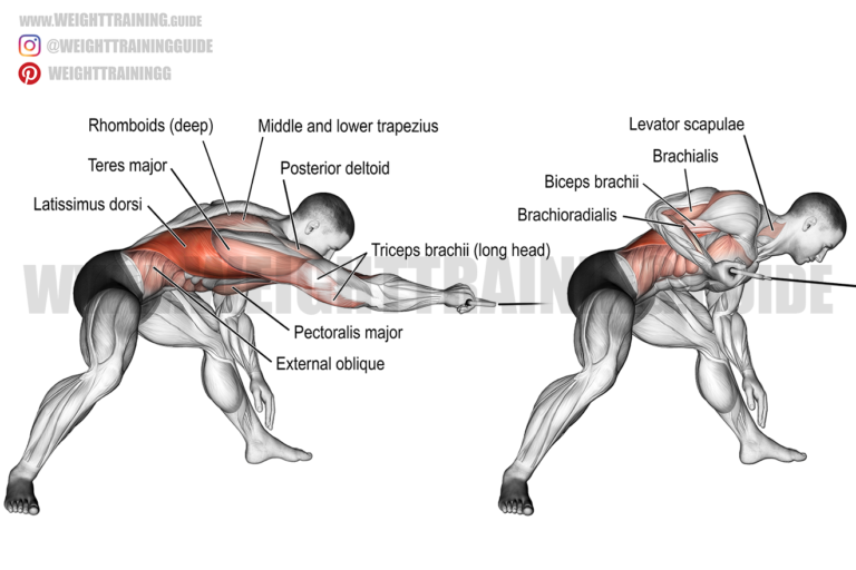 Bent-over one-arm cable pull