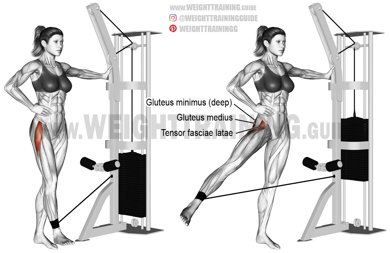 Cable hip abduction exercise instructions and video ...