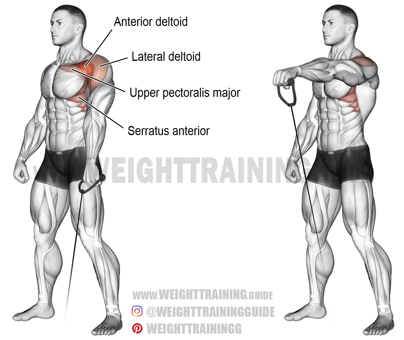 Cable one-arm front raise exercise instructions and video