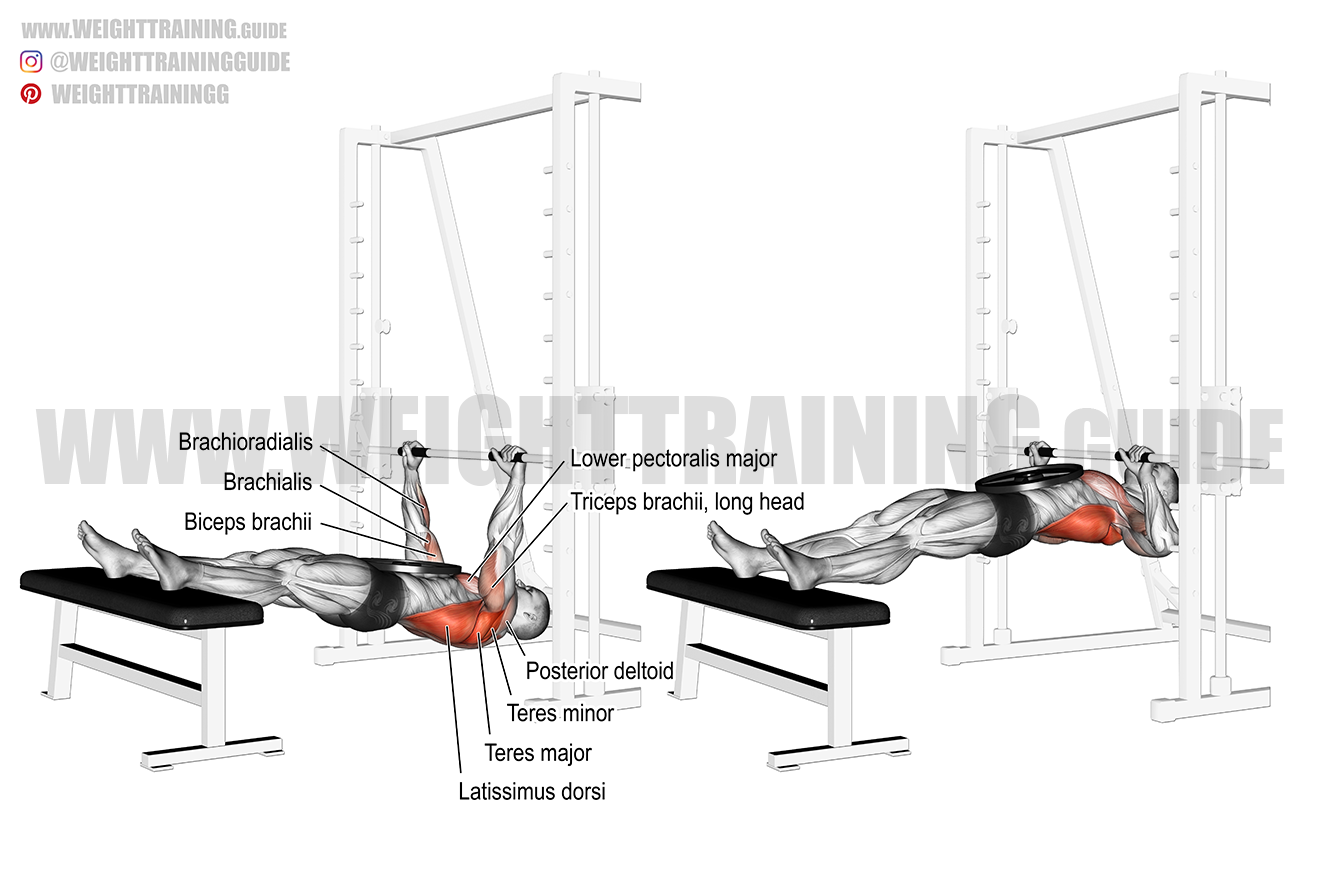 Weighted inverted row exercise