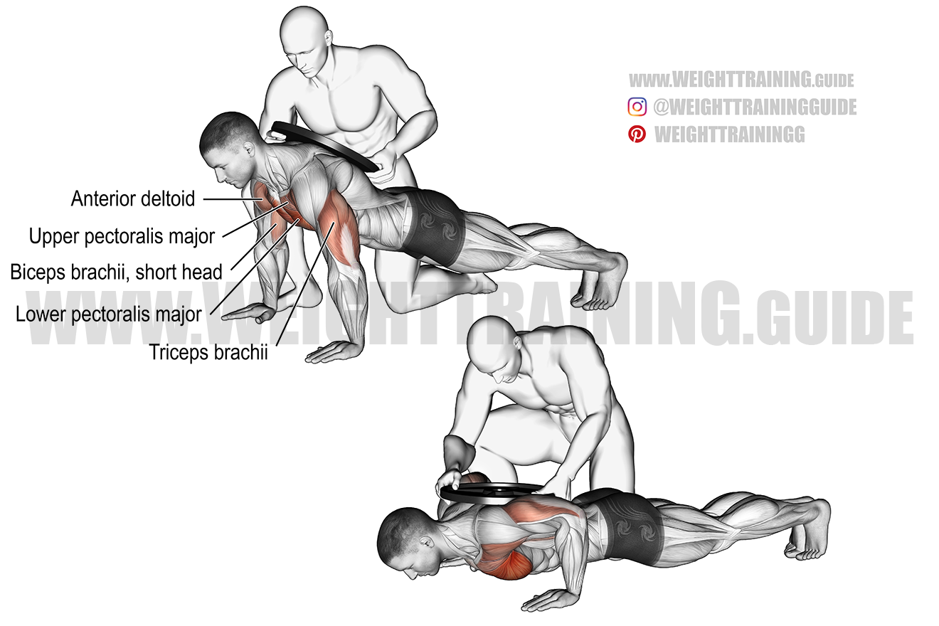 Weighted push-up exercise