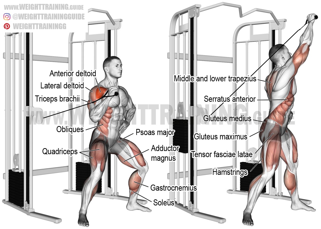 Twisting Cable Overhead Press Exercise Instructions And Video