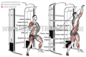 Twisting cable overhead press exercise