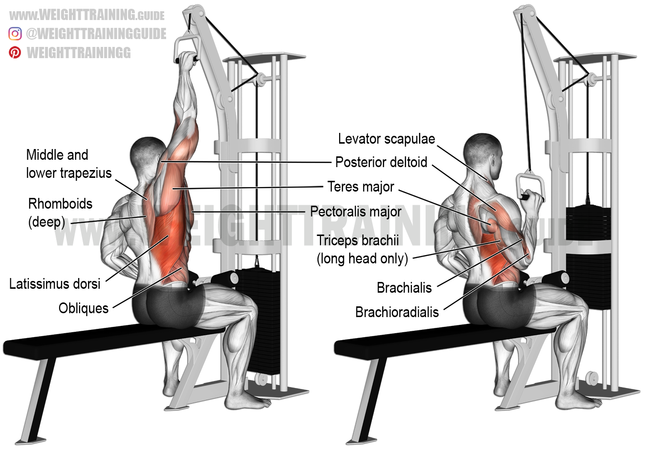 how to work your lats with free weights