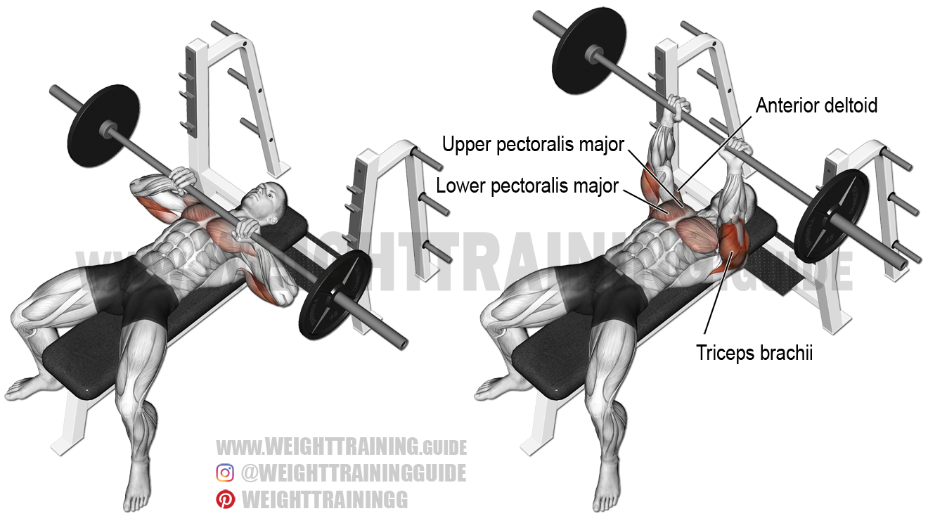 Close-grip barbell bench press exercise instructions and video