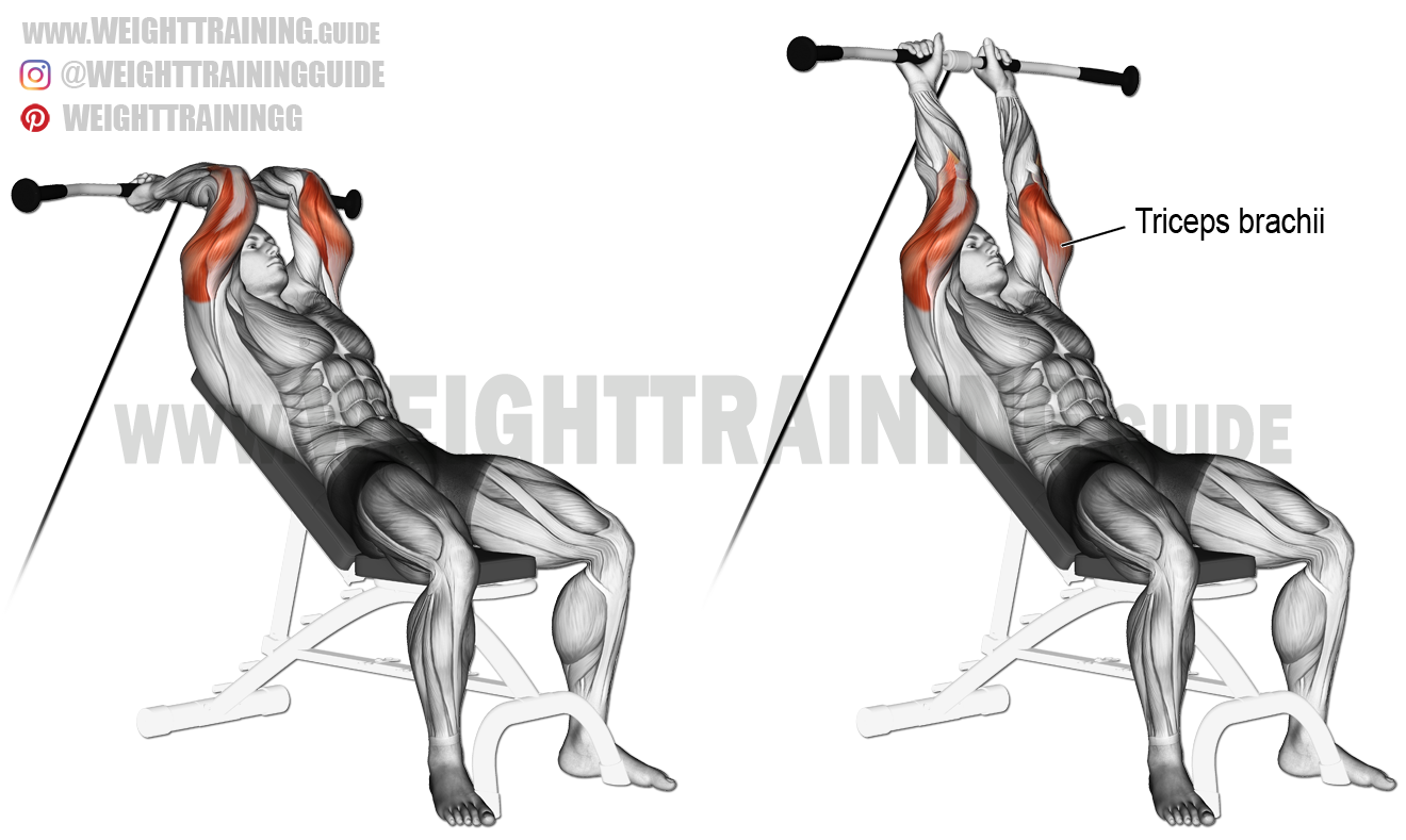 Incline cable triceps extension exercise instructions and ...