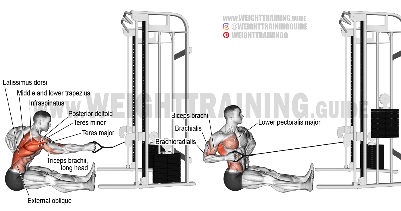 twisting machine exercise
