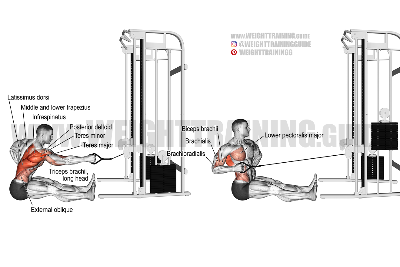 Seated twisting cable row exercise