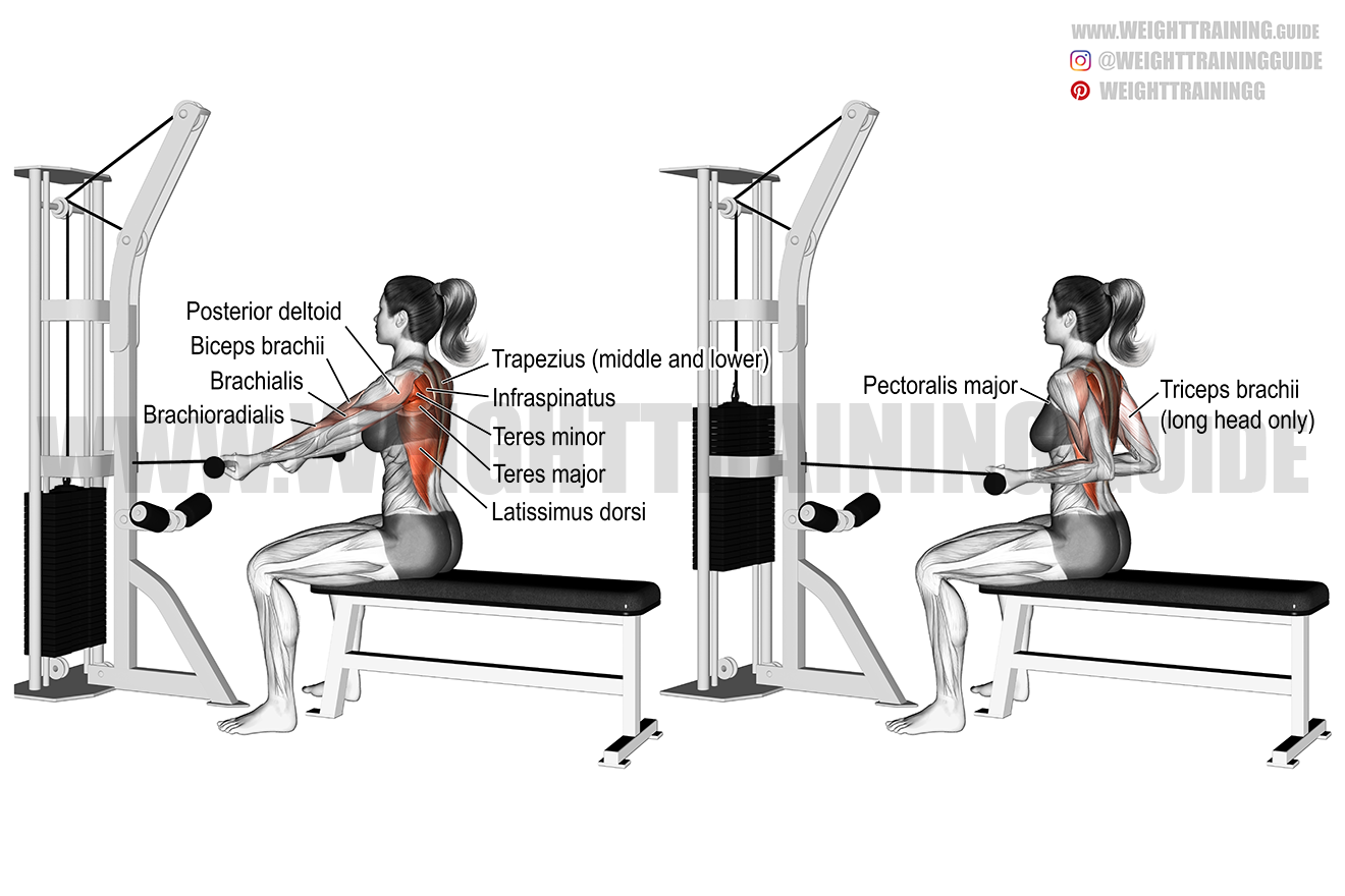 Straight-back underhand cable row exercise