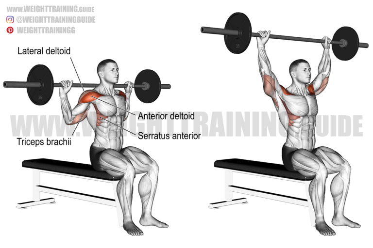 Seated behind-the-neck barbell shoulder press