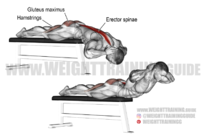 Flat bench hyperextension exercise