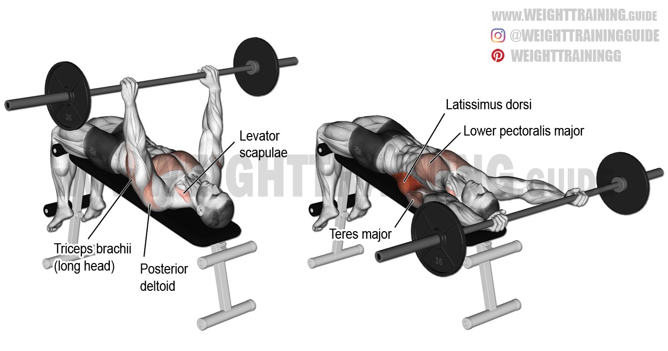 Decline barbell pullover exercise guide and video | Weight ...