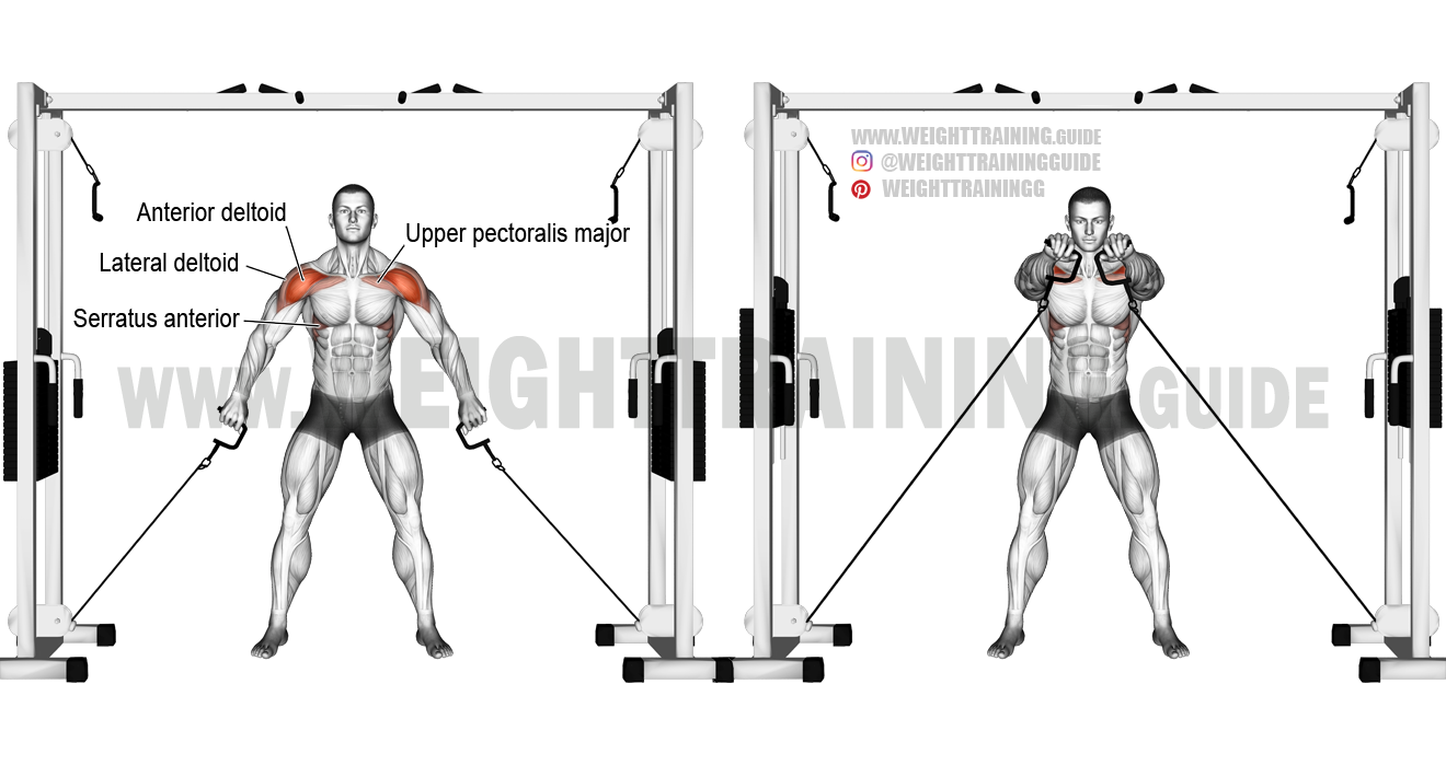 double cable front raise exercise guide and video weight