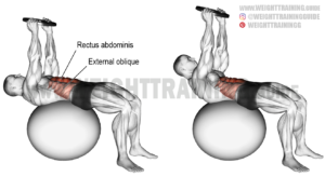 Weighted stability ball crunch exercise