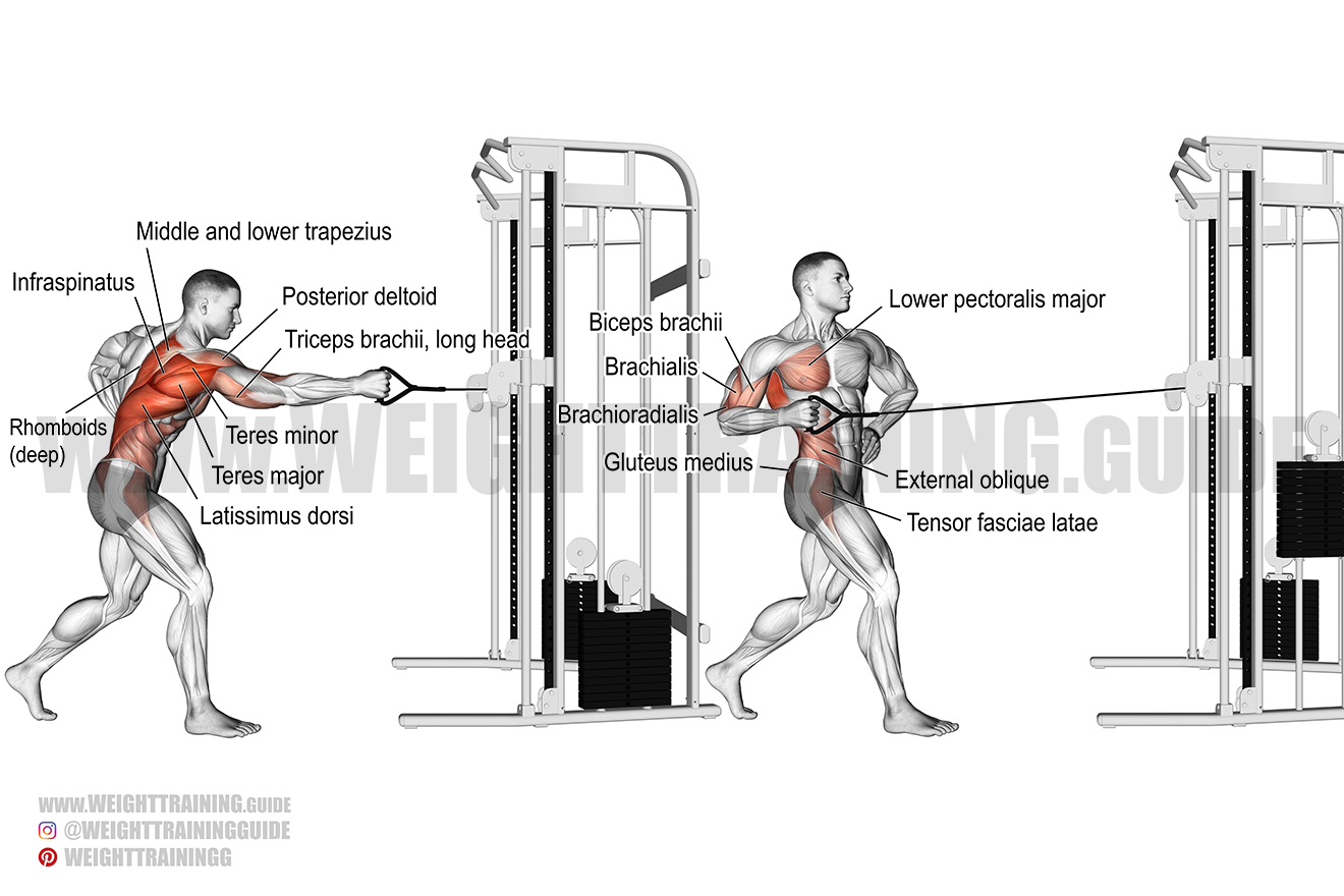 Standing twisting cable row exercise