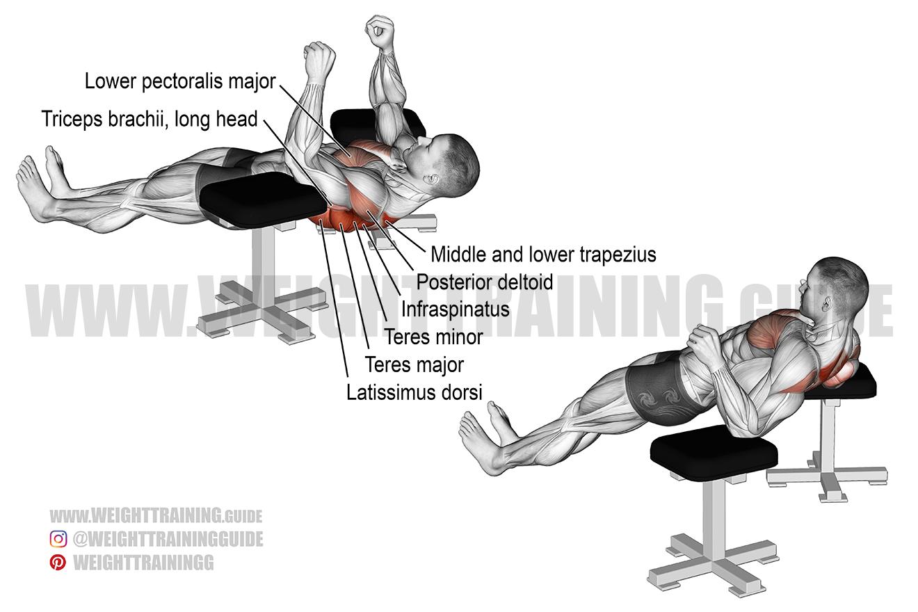 Elbow lift exercise