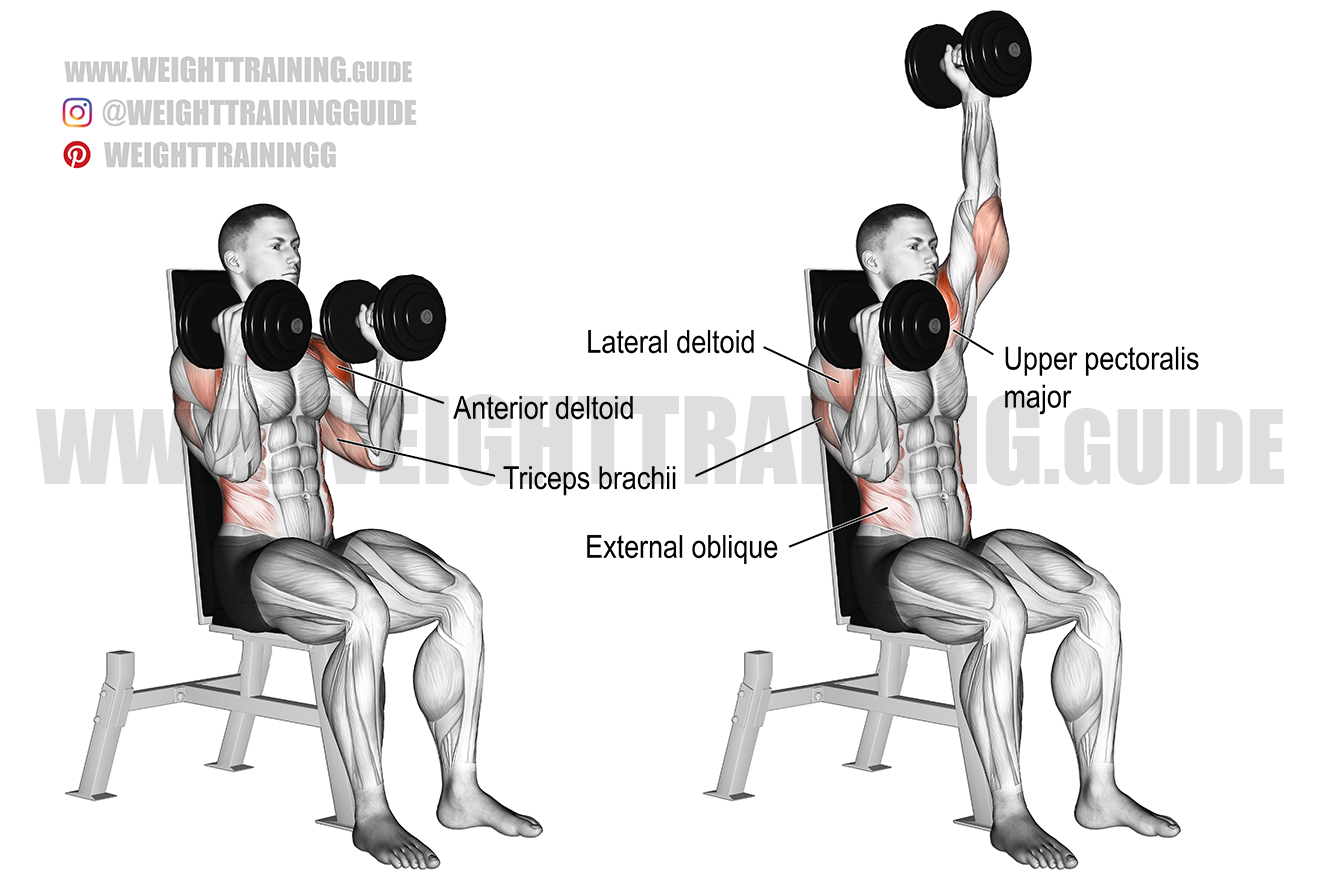 Seated elbows-in alternating dumbbell overhead press exercise