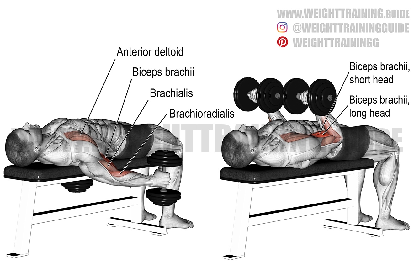 Supine dumbbell curl exercise