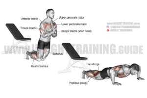 Inverse leg curl exercise