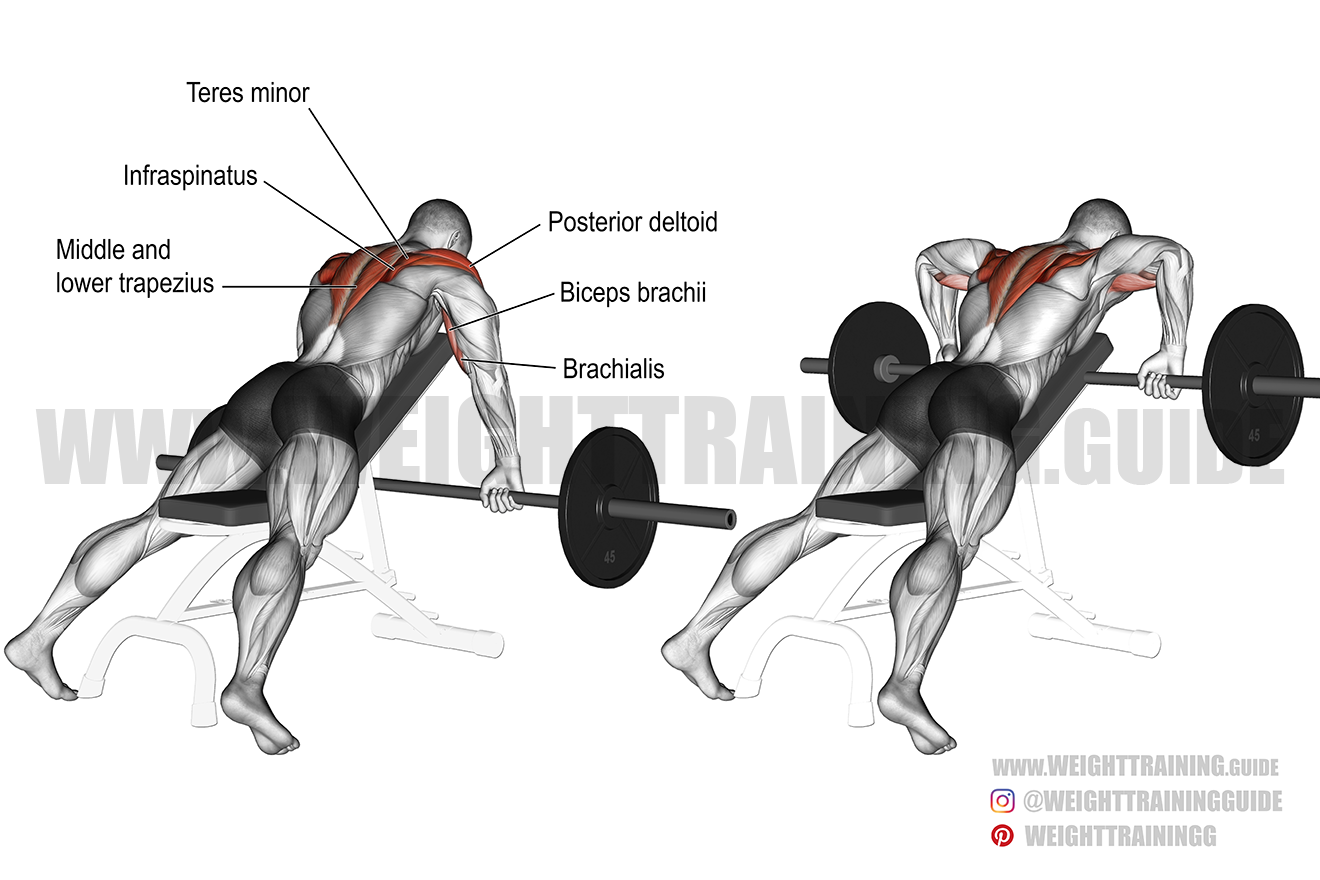 Prone incline wide-grip upright row exercise