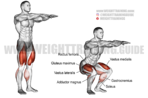 Bodyweight squat exercise
