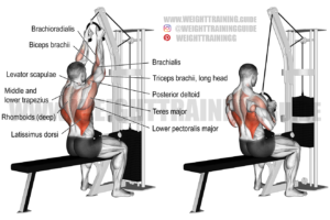 Rope lat pull-down exercise