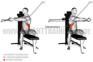 Seated cable twist exercise