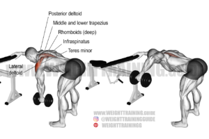 One-arm reverse dumbbell fly exercise