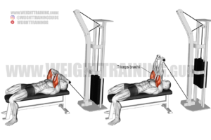 Lying cable skull crusher exercise