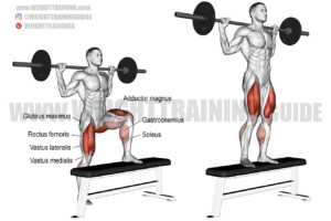 Barbell step-up exercise