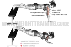 Decline push-up exercise