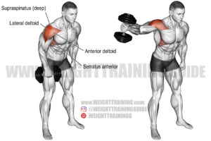 Dumbbell one-arm lateral raise exercise