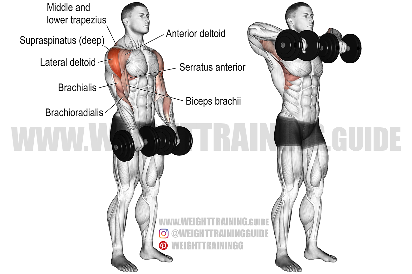 Dumbbell wide-grip upright row exercise