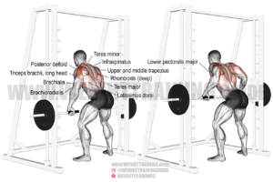 Smith machine Yates row exercise