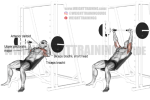 Smith machine incline bench press exercise