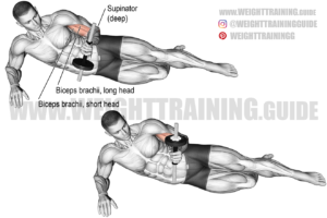Lying dumbbell supination exercise