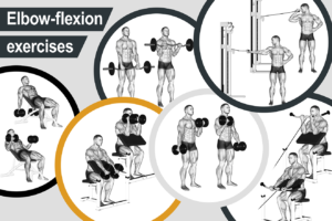 Elbow-flexion exercises
