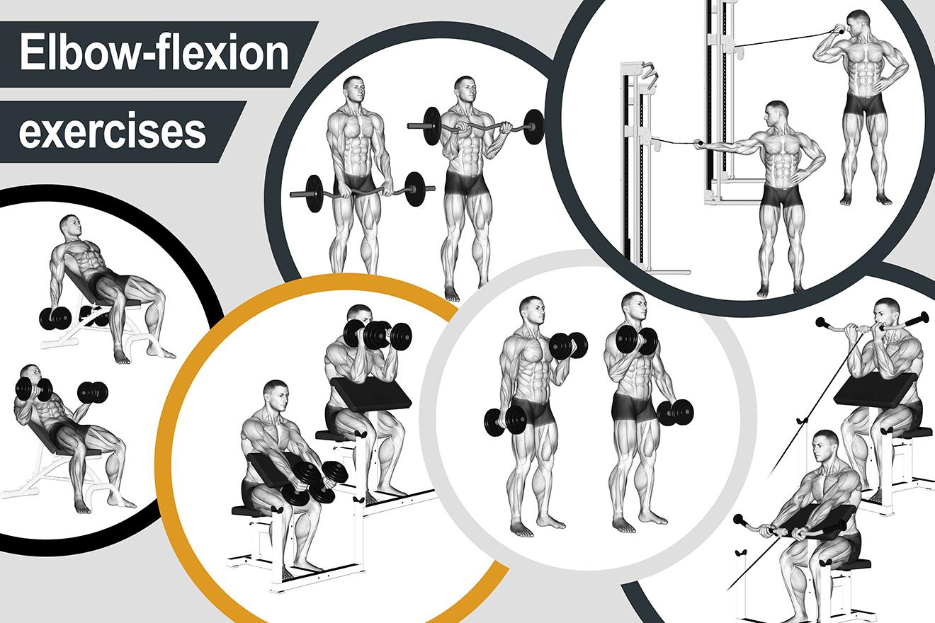 Elbow-flexion exercises