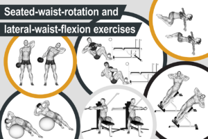 Seated-waist-rotation and lateral-waist-flexion exercises