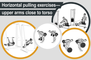 Horizontal pulling exercises - upper arms close to torso
