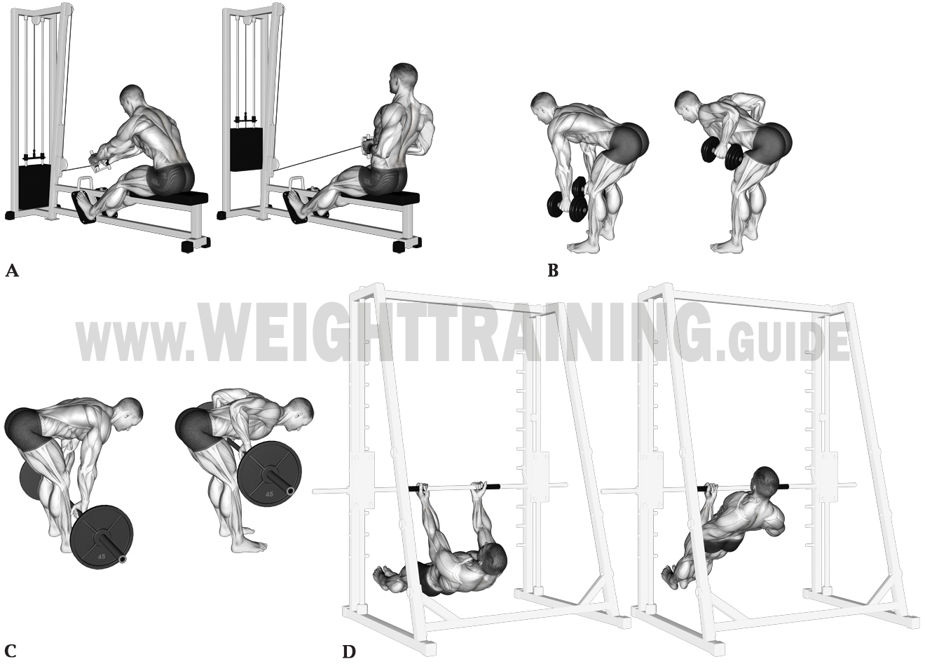 Horizontal pulling exercises, upper arms close to torso
