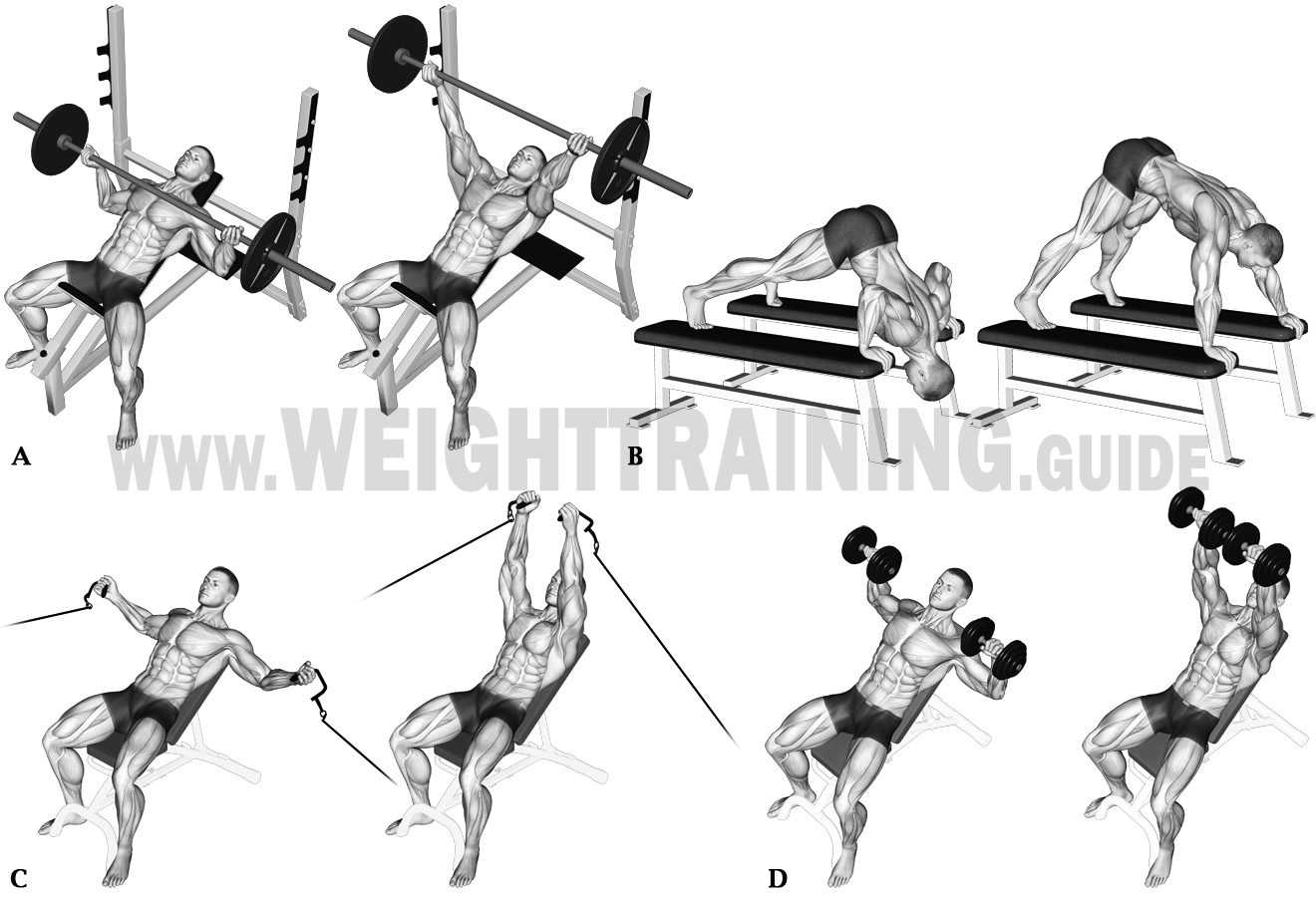 Horizontal pushing exercises, obtuse