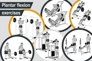 Plantar flexion exercises