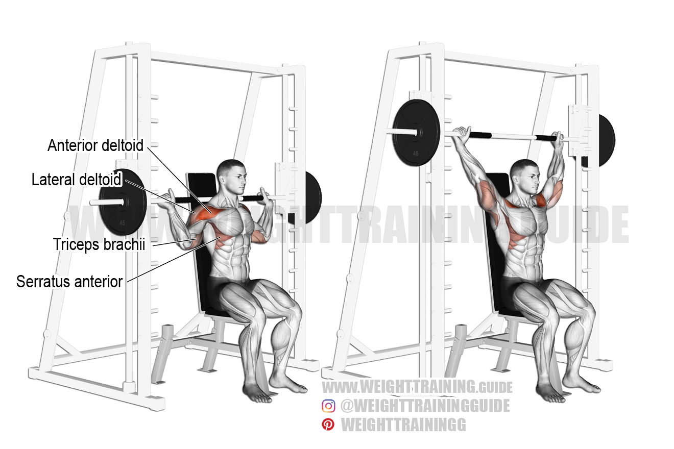 Seated Smith machine behind-the-neck shoulder press exercise